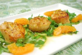 Free Appetizer w/ Purchase of 2 Entrees