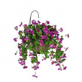 Hanging Plant Extravaganza