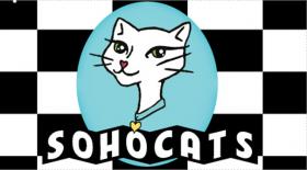 SoHoCats Luxury Feline Hotel