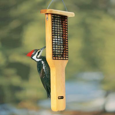 New Bird Feeders for the Season!