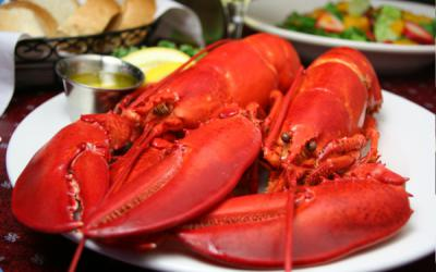 Twin Boiled Lobsters Wed $19.95