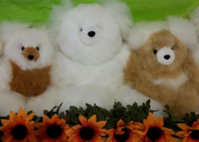 Alpaca Teddy Offer