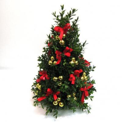 $5 Off Boxwood Tree Workshop-reg. $45