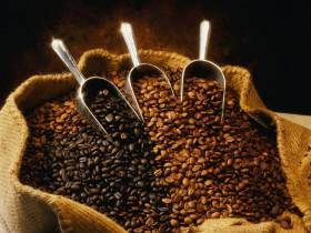 Delicious Arabica Bean Coffee 20% off
