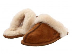 Now Carrying Ugg