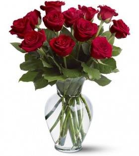 Save $10 on a Dozen Roses