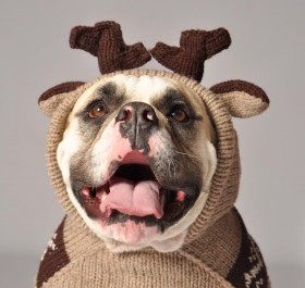 Winter Sweater Sale - 40% Off