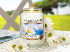 Yankee Candle: Buy 1 Get 1 FREE!