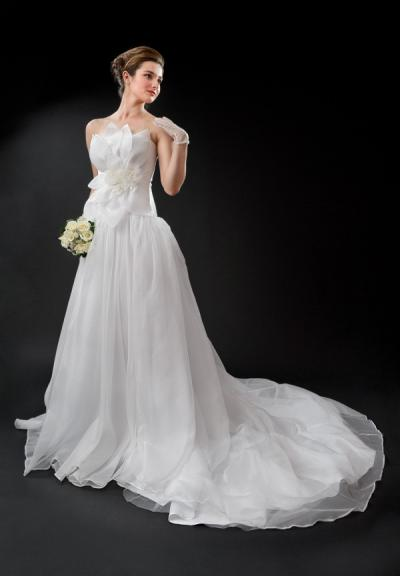 Free veil with   order of bridal gown