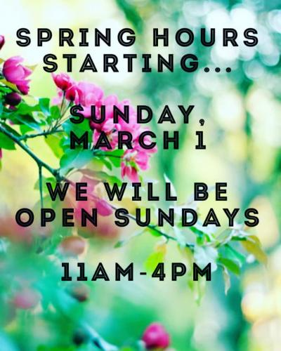 Spring Store Hours